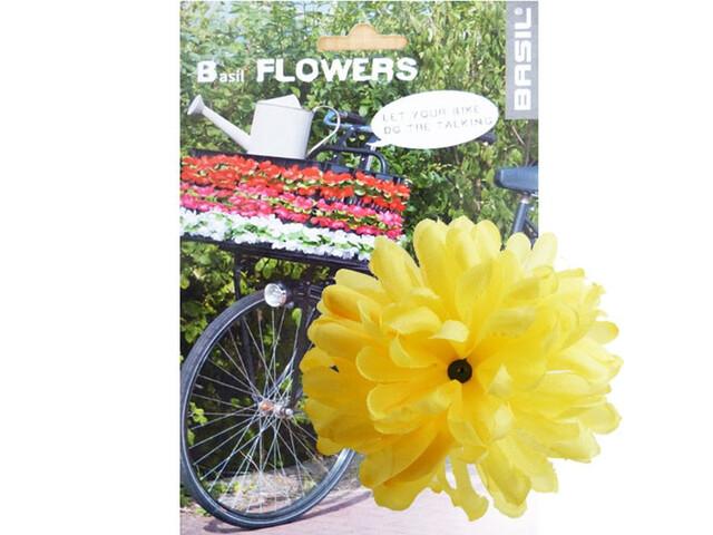 Basil Flower Dahlia til styre og ramme Gul